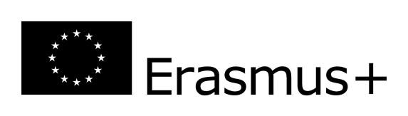 eu-flag-erasmus_vect_pos-bw